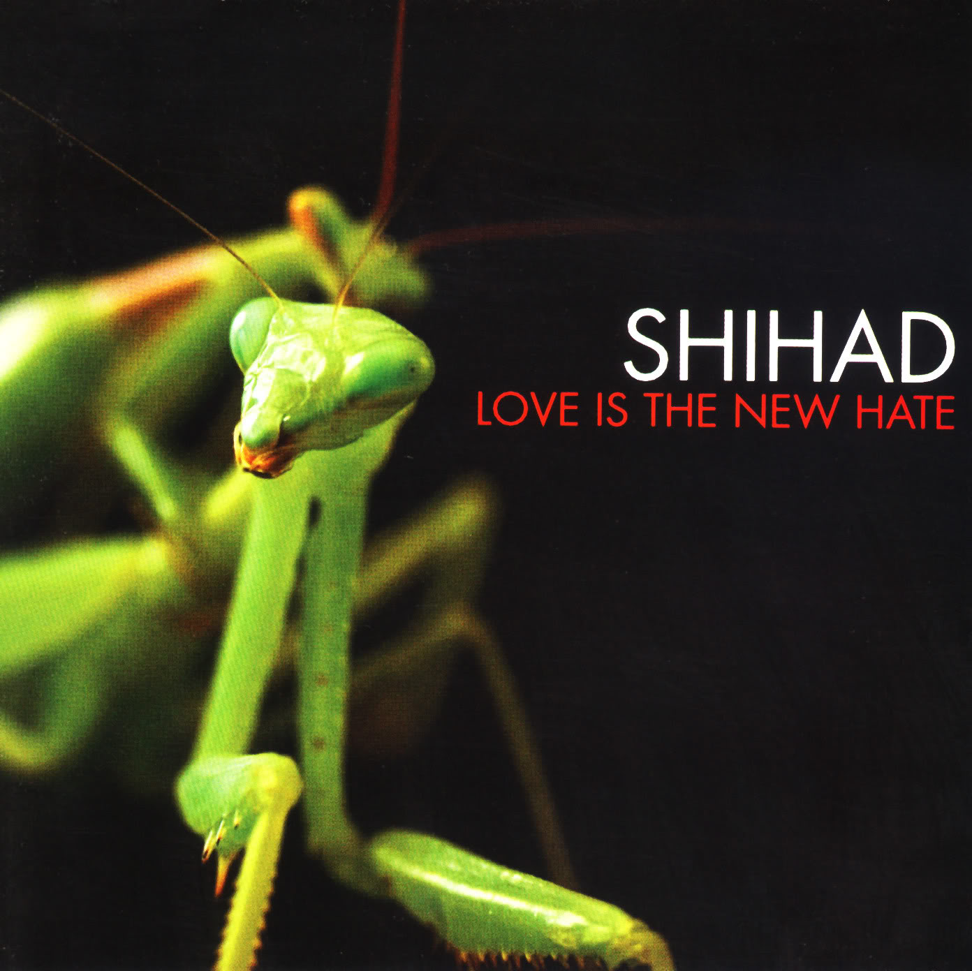 Love Is the New Hate cover art